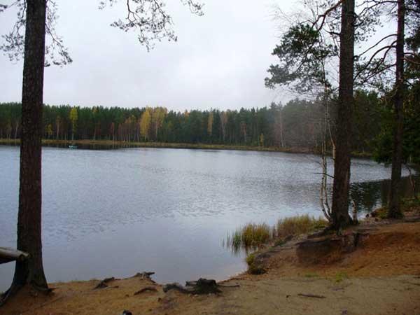 Озеро Монетка к северу от Первомайского – место старта многих соревнований по спортивному ориентированию