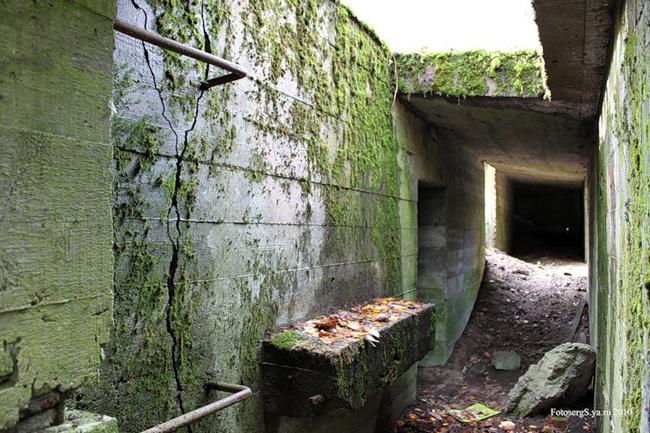 Бункер «Карельского вала» севернее Первомайского